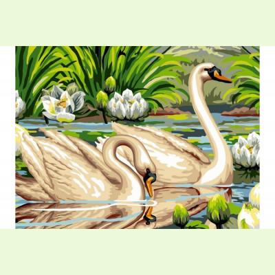 Лебеди в пруду
