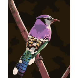 Радужная птица