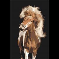 Довольный конь