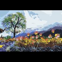 Тюльпаны в горах