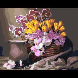 Тюльпаны и орхидеи