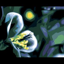 Картина по номерам - Ночной цветок