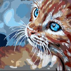 Картина по номерам - Задумчивый котенок
