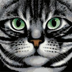 Картина по номерам - Зеленоглазый кот