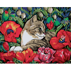 Картина по номерам - Кот в маках
