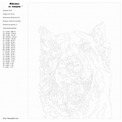 Картина по номерам - Добрый пёс