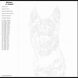 Картина по номерам - Злой пес