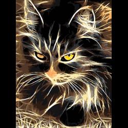 Загадочный кот