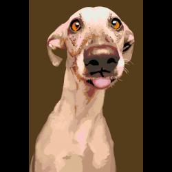 Глупый пес
