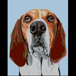 Картина по номерам - Задумчивый пес