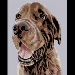 Картина по номерам, Собака