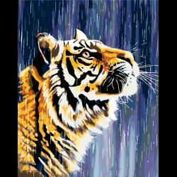 Тигр под дождем