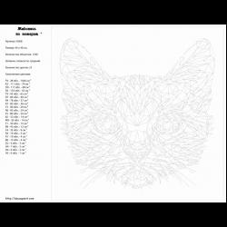 Картина по номерам - Морда кота