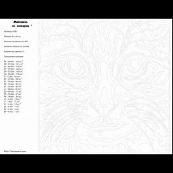Картина по номерам - Милый кот