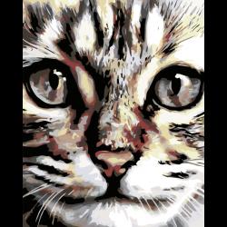 Картина по номерам - Милый котенок