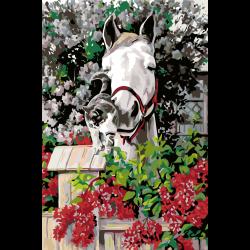 Картина по номерам - Лошадь и котенок