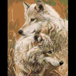 Волки осенью