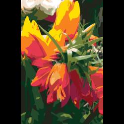 Картина по номерам - Огненные цветы