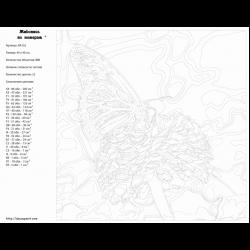Картина по номерам - Бабочка Монарх
