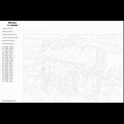 Картина по номерам - Лошадь с жеребенком